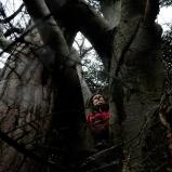 Elisabeth. Kiné. Dans son arbre, au début du Beaujolais. Il suffit d'oser s'écarter du chemin, retrouver ses prises sur les deux arbres emmêlés, se blottir là où personne ne sait.