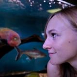 Sabrina. Apprentie. Aquarium à Villeurbanne. Aquariophile, ça commence comme à quoi rêvent les jeunes filles, ça finit on ne sait où, là où brillera la fantaisie.