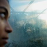 © Ernesto Timor, 2014