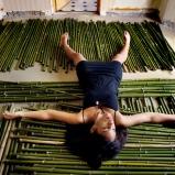 Apparitions à la maison de bambou - 02