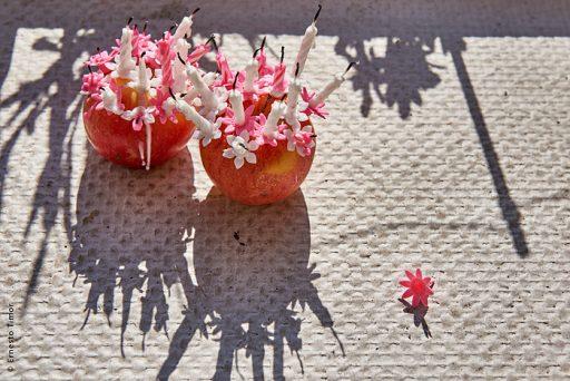 Photo © Ernesto Timor - l'anniversaire