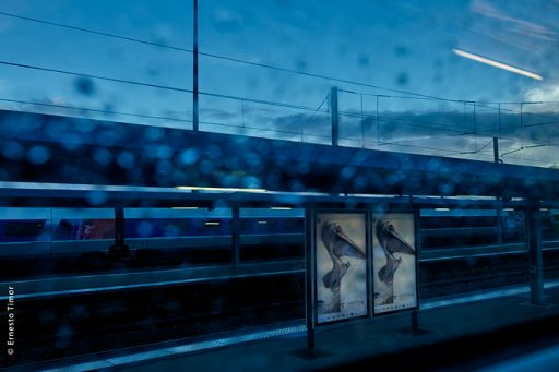 Photo © Ernesto Timor - Comme un pélican sur un quai de gare