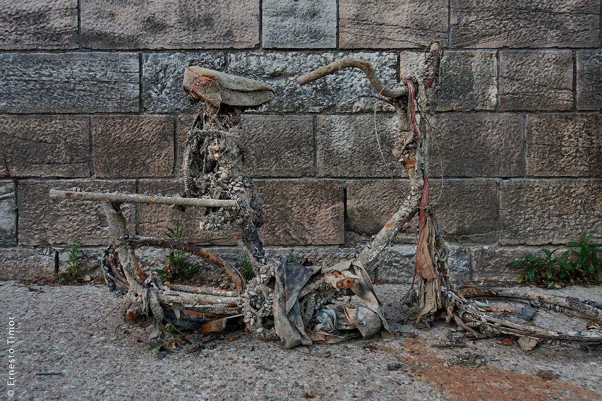 Photo © Ernesto Timor - Epave de vélo repêchée dans la Saône